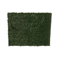 2 x Synthetic Grass replacement only for Potty Pad Training Pad 63 cm x 50 cm